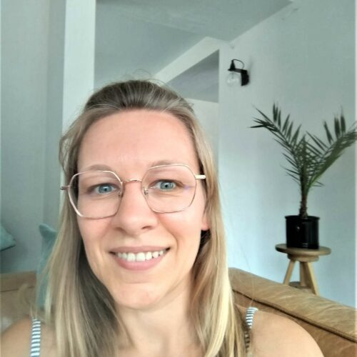 Els online professeur en ligne d-teach online school