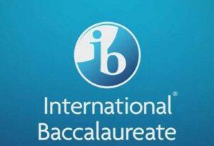 d-teach online school online IB native language lessons